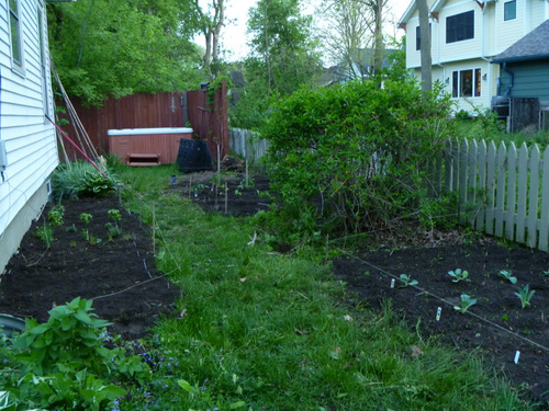 Three garden plots, about 550 sq. feet